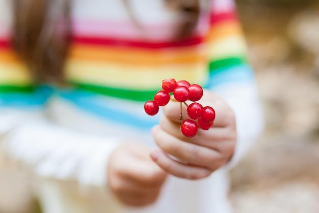 ナナカマドの枝を手に持った子少女。前景に焦点を当てます。季節の秋の果実