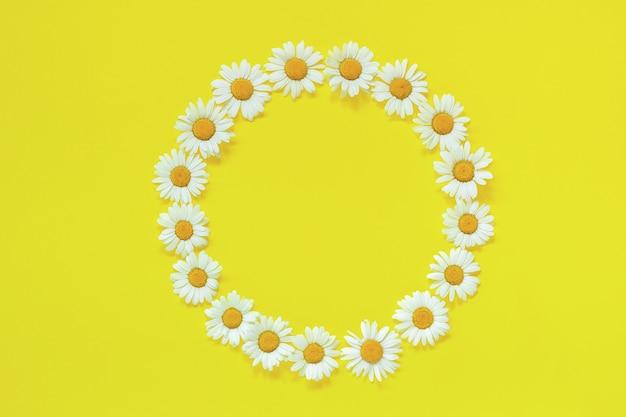 黄色の背景に花カモミールの花の丸い花輪をフレームします。