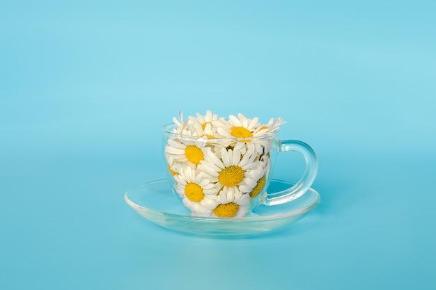 透明なガラスのカップにカモミールの花。天然カモミールティー、薬草