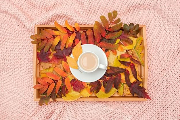 ミルクとピンクのパステルカラーのニット格子縞の木製トレイにカラフルな葉とコーヒーのカップ