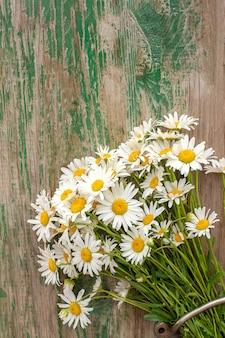 Букет полевых ромашек ромашковых цветов