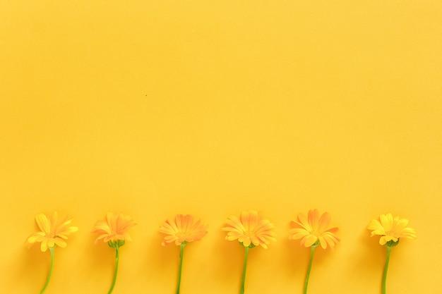 黄色の背景にオレンジ色のキンセンカの花で作られた境界線。コンセプトこんにちは春か夏