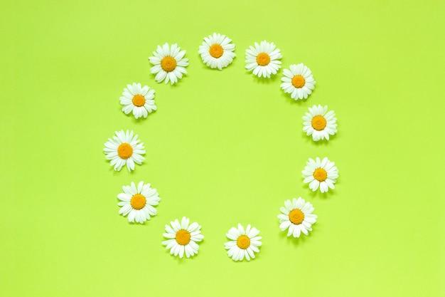 カモミールの花のフレームフローラルラウンドリース。