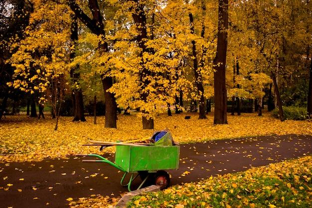 秋の公園の黄金の葉