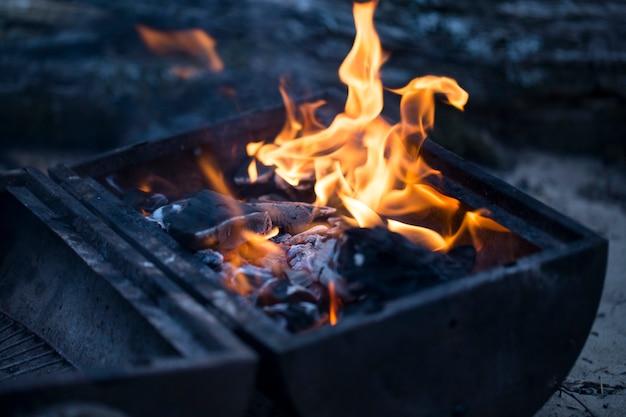 森の焚き火の炎をクローズアップ