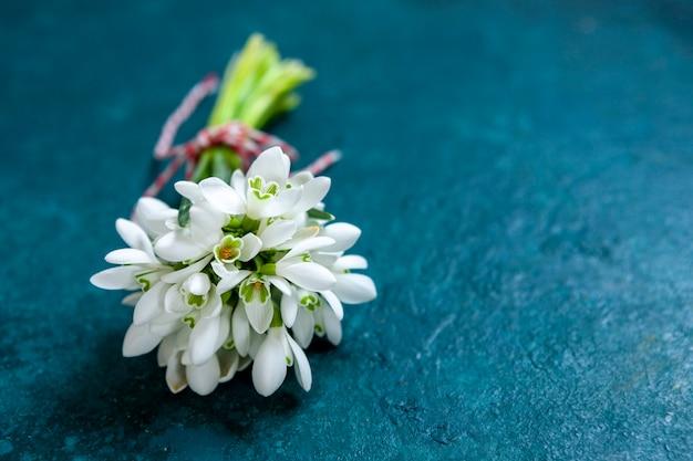 Свежий красивый букет цветов первых весенних лесных подснежников с красно-белым шнуром мартисора