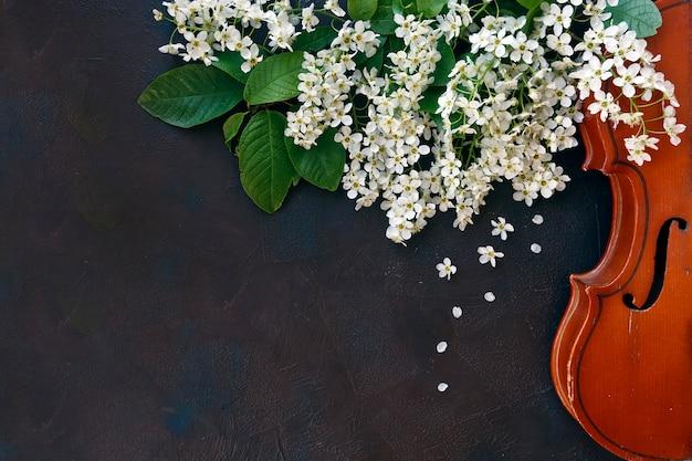 黒の背景に美しい花盛りの木の枝を持つバイオリンのクローズアップ。
