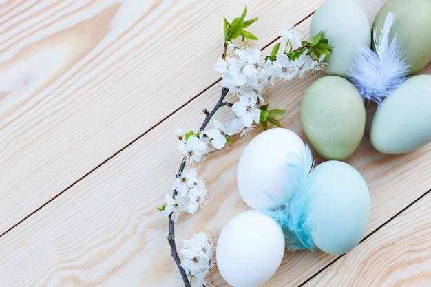 新鮮な鶏のカラフルな卵と白い木製の背景に桜の花