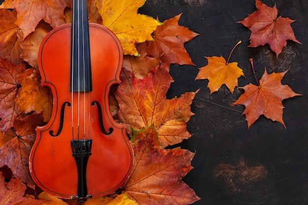 黄色の秋のカエデの古いバイオリンは背景を残します。トップビュー、クローズアップ。