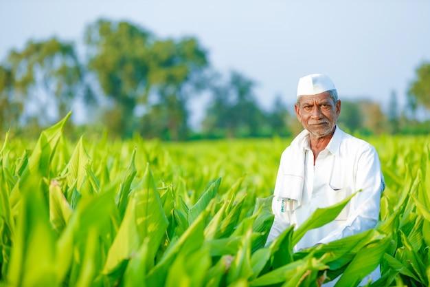 Молодой индийский фермер на поле