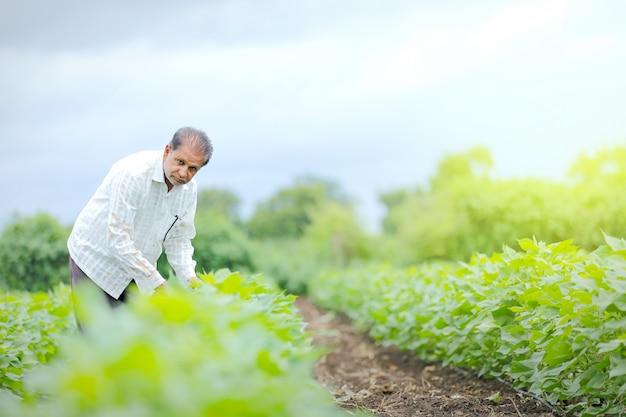 フィールドで若いインド人農家