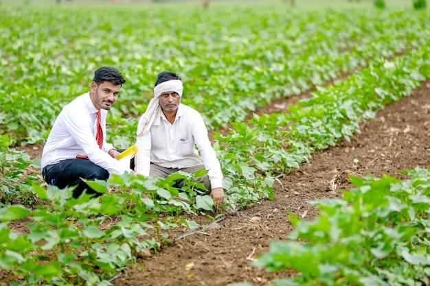 綿畑で農民と農学者