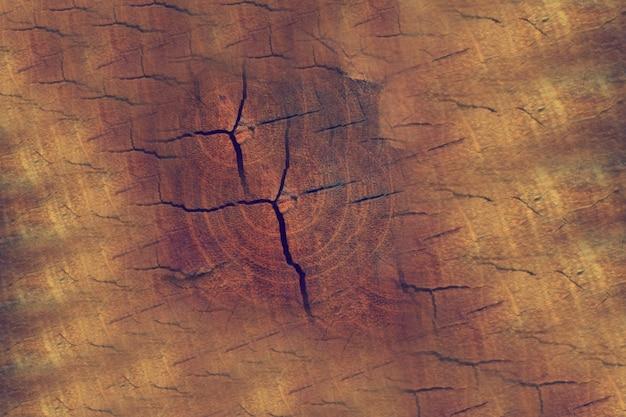 木の傷のテクスチャ