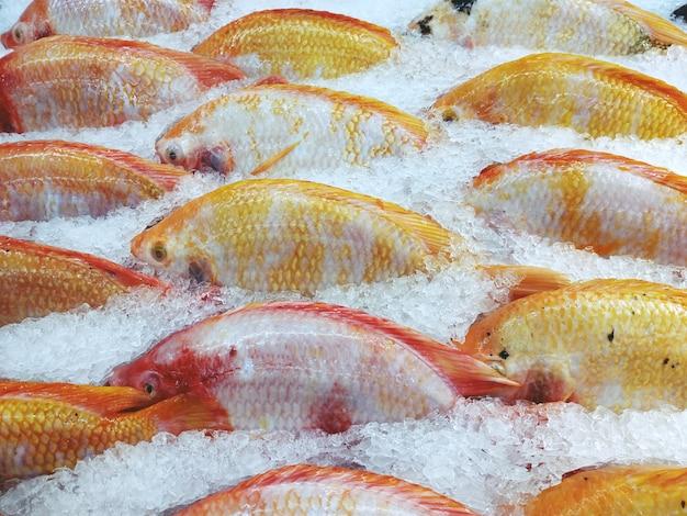 スーパーで氷の上の赤いティラピア魚またはルビー魚