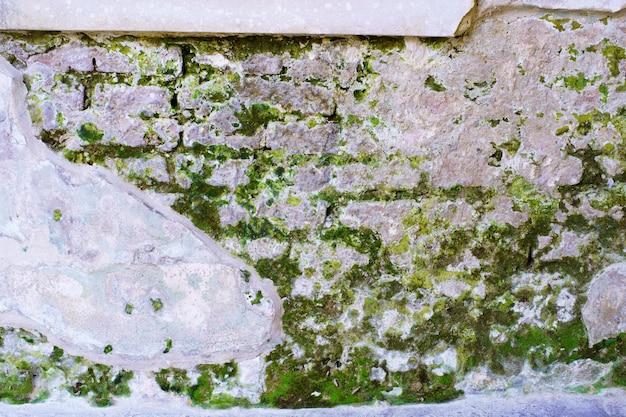 モスの背景を持つ抽象的なレトロな古い壁レンガの亀裂