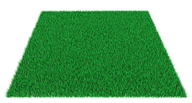 Зеленый ковер прямоугольной травы