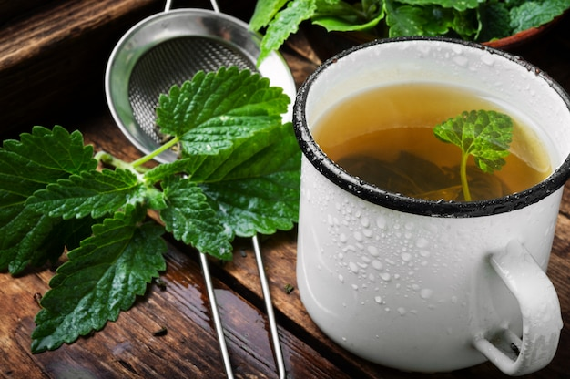 Чай с зелеными свежими листьями мелиссы
