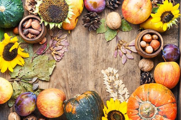 秋の収穫静物フレーム背景トップビュー