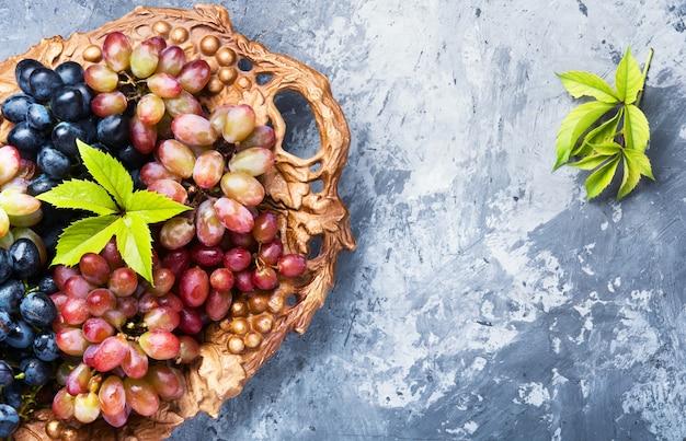秋の熟したブドウ