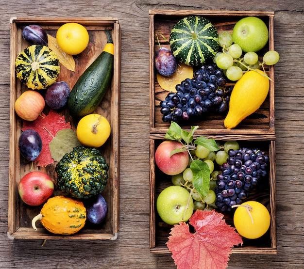 美しい秋の収穫