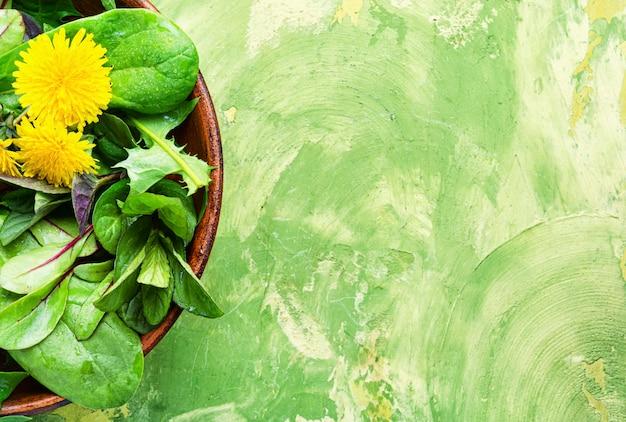 春のタンポポのサラダ