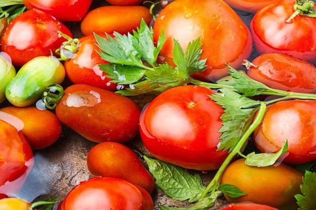秋の缶詰トマト