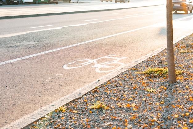 アスファルトの自転車専用ライン。