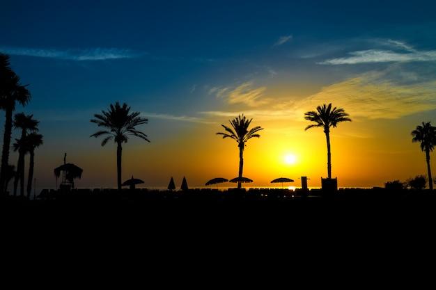 海沿いの日の出でヤシの木とビーチパラソルの美しいシルエット