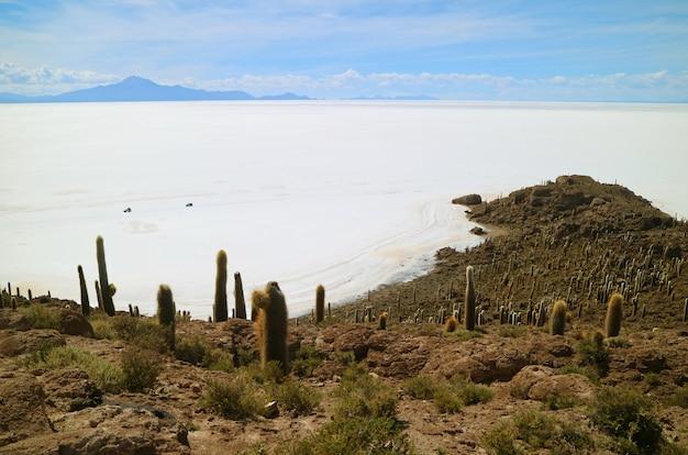 世界最大の塩の干潟であるウユニ塩湖がインカワシ島からの眺め