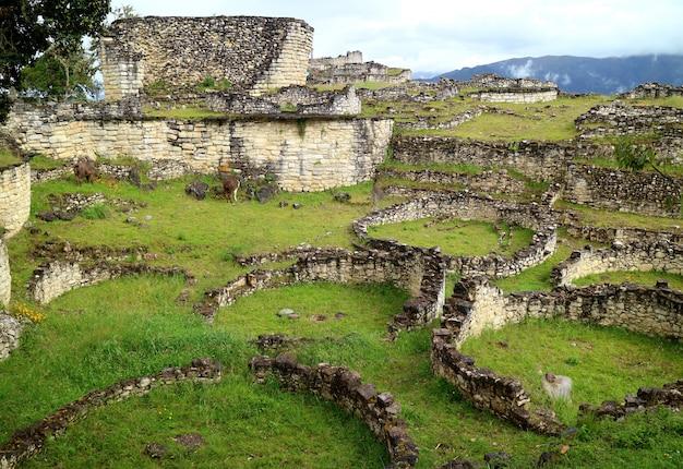 Руины внутри археологических раскопок в куэлапе с множеством древних каменных круглых домов, перу