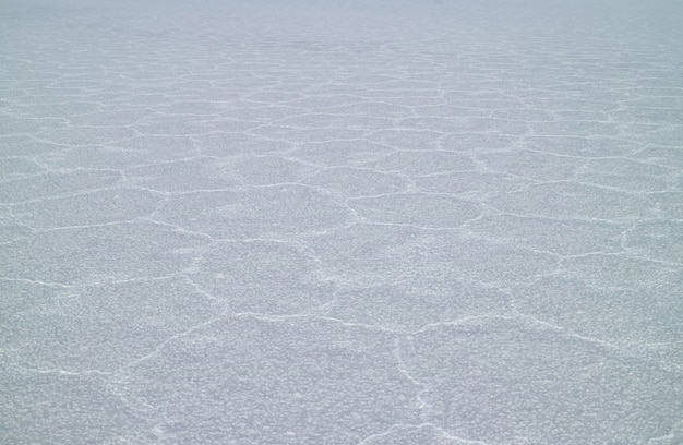 南アメリカ、ボリビア、ポトシの雨季後のウユニ塩原の表面
