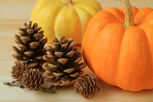 鮮やかな色の熟したカボチャと木製のテーブルの多くの天然乾燥パインコーンのペア