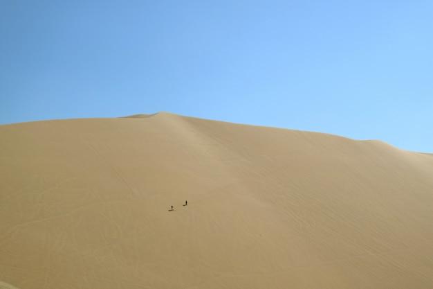 Два человека веселятся на огромной песчаной дюне пустыни уакачина, регион ика, перу, южная америка