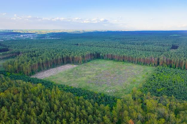 緑の針葉樹林の継続的な森林破壊の広大な地域。環境に対する人間の影響。空中ショット。