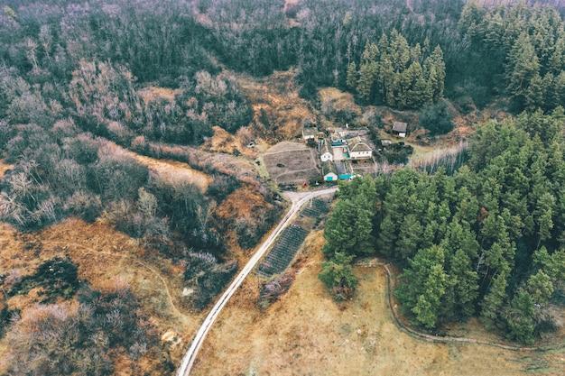 カラフルな大気の風景-未舗装の道路と調和のとれた色の焦げた松林の近くの家