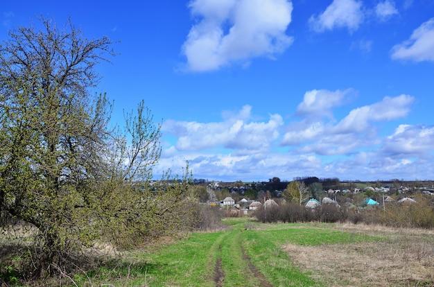 多くの民家と緑の木々のある田園風景