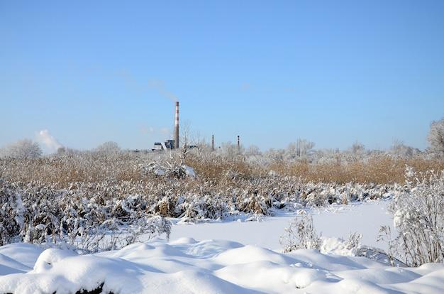 電力線タワーは雪に覆われた湿地帯にあります。