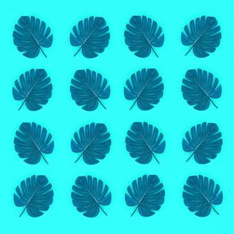 Листья тропической пальмы монстера лежат на бумаге пастельных тонов.