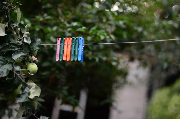 家とリンゴの木の外にぶら下がっているロープの洗濯はさみ