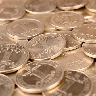 経済的な成功ウクライナのお金