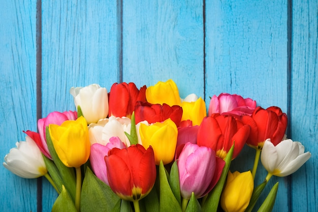 青い色の木の板にマルチカラーチューリップのクローズアップの明るい花束。