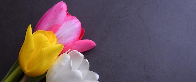 暗い灰色の漆喰壁にクローズアップでマルチカラーのチューリップの美しい明るい花束。