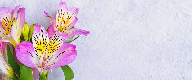 蘭の花の花束
