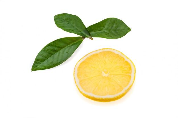 Круглый ломтик яркого, свежего, сочного лимона и несколько зеленых листьев на белом фоне. изолированы.