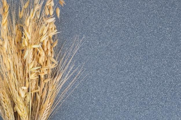 小麦と大麦の灰色の花崗岩の背景に鮮やかな耳。