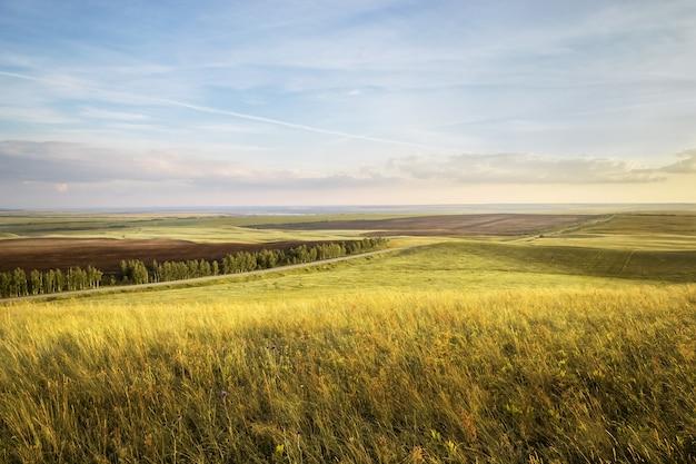 ゴールデンライ麦や夏の小麦の畑に沈む夕日。