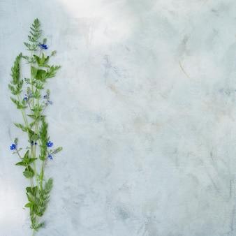 灰色の背景上の夏の花の組成。