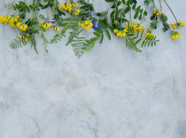 Композиция из летних цветов на сером фоне.