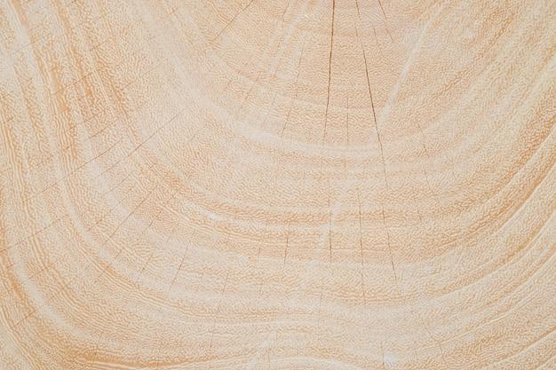 切断後の木周胴のテクスチャを閉じます。
