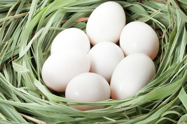 わらにアヒルの卵。